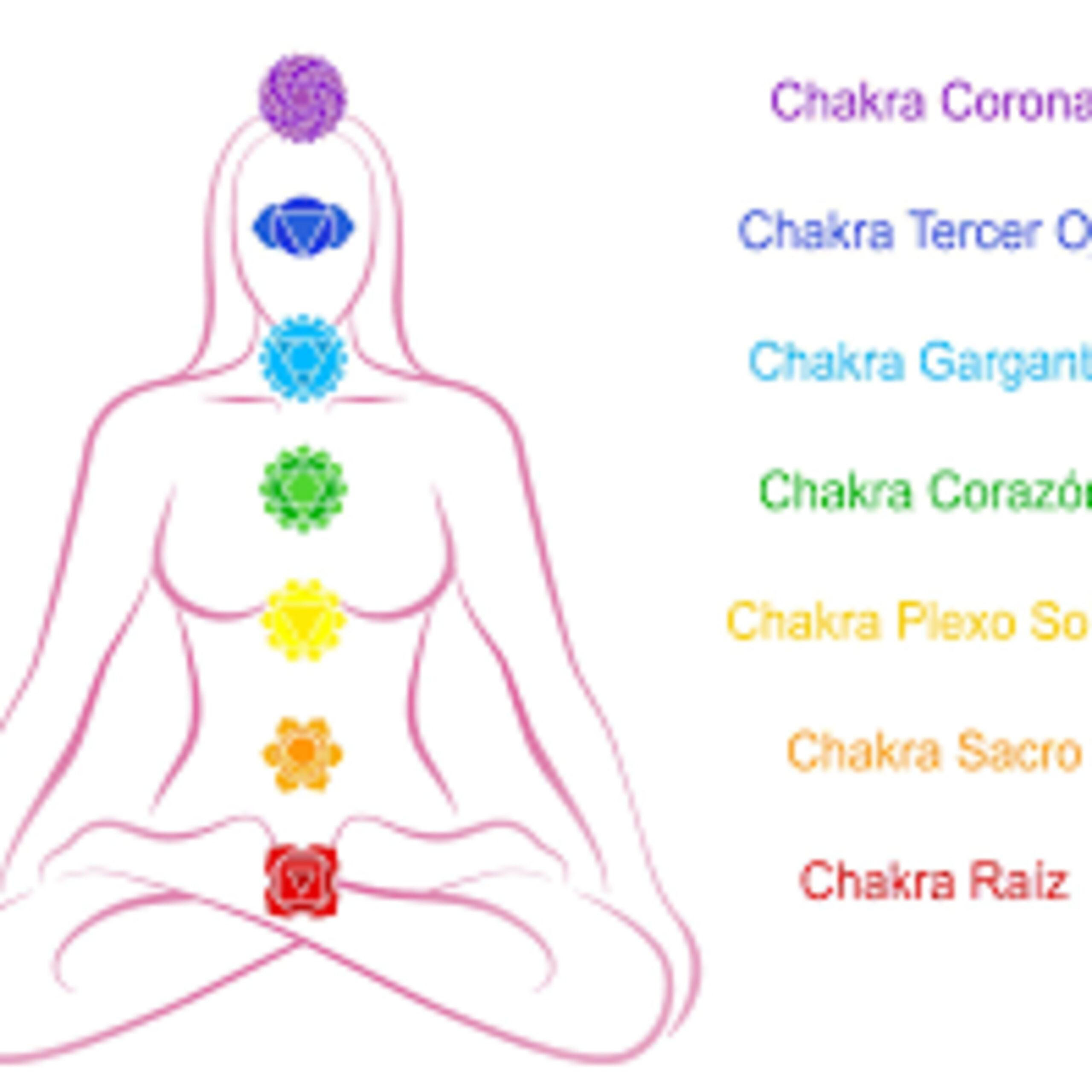 Los Chakras – Conecta con Energia!